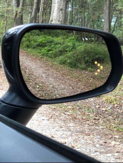 آینه راهنمادار